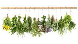 Pakke med 13 forskellige krydderurter frø. Værdi ca. 325 Spar 275