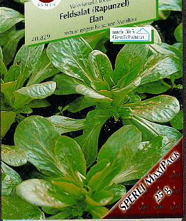 Salat Vårsalat Feldsalat 'Vit/ Volhart'. 25 gram
