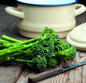 Broccoli Green Sprouting, Økologisk