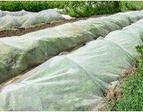 Fiberdug/plast/insektnet til overdækning af kartofler, kål, grøntsager,