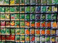 frøhandel udsalg billige frø
