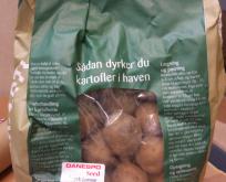 Læggekartoffel, Æggeblomme, Sen, pillet, salat.