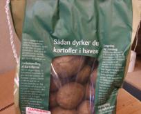 Læggekartoffel Sava Økologisk 2 kg, middeltidlig, pillet