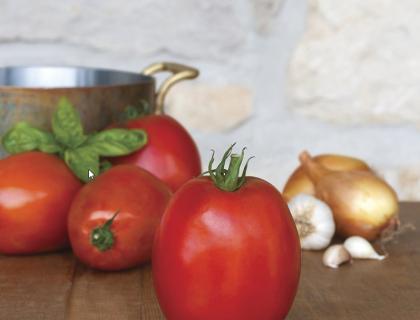 Tomat, Super Sauce