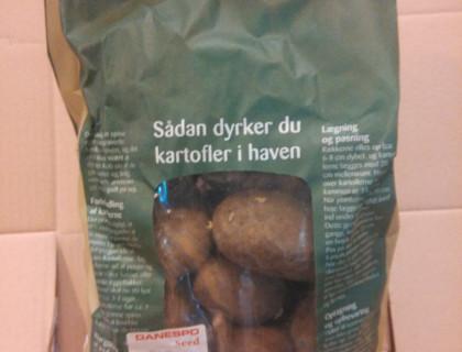 Læggekartoffel Sava 2 kg, middeltidlig, pillet