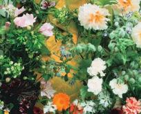 Spiselige blomsterblanding